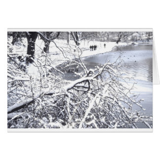 Central Park Winter Lake Card