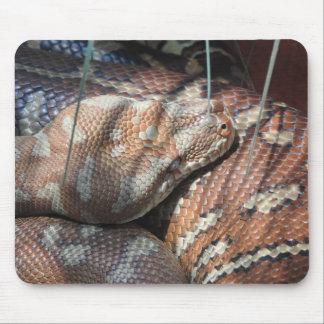 Centralian Carpet Python Mouse Pad