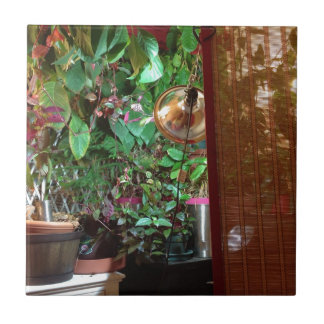 Ceramic Tile with Indoor Nature Photo