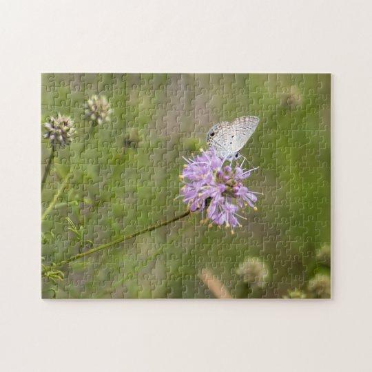 Ceraunus Blue Butterfly Nectars on a Purple Flower Jigsaw Puzzle