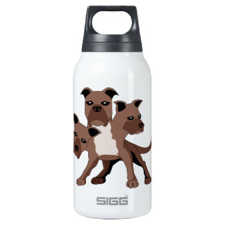 Cerberus 0.3 Litre Insulated SIGG Thermos Water Bottle