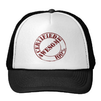 Certified Awesome Hat