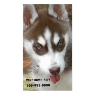 CF- Siberian Husky Puppy Business Cards