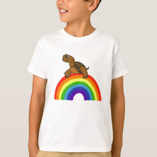 CF- Turtle on a Rainbow Shirt