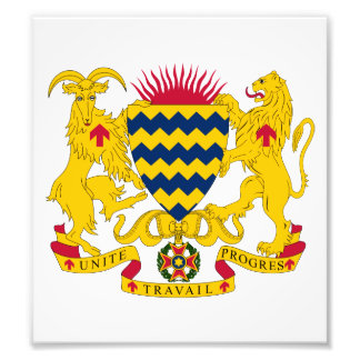 Chad Coat Of Arms Photo Art