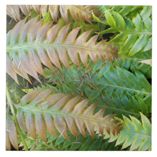 Chain Fern Floral Tile