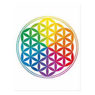 Chakra Flower Of Life Grid Postcard