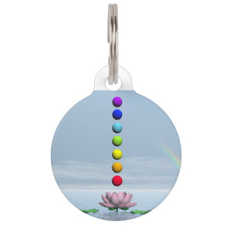 Chakras and rainbow - 3D render Pet Nametags