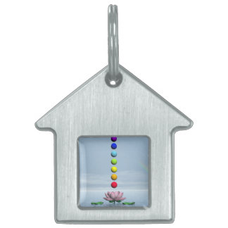 Chakras and rainbow - 3D render Pet Tags
