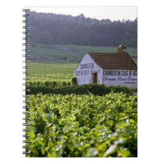 Chambertin Clos de Beze Grand Cru vineyard with Notebooks