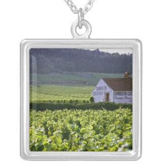 Chambertin Clos de Beze Grand Cru vineyard with Square Pendant Necklace