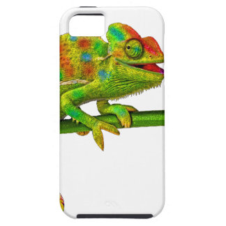 Chameleon Case For The iPhone 5