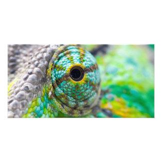 Chameleon eye personalized photo card