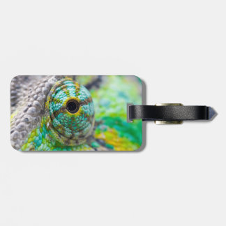 Chameleon eye tags for luggage