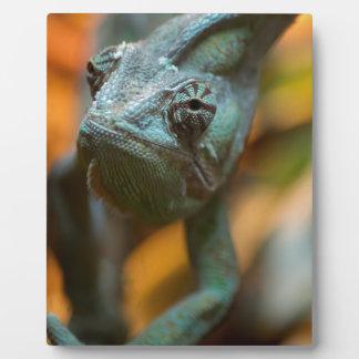 Chameleon Photo Plaque