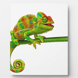 Chameleon Plaque