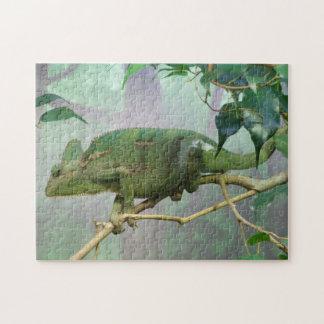 Chameleon Puzzle