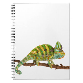 Chameleon Spiral Note Books