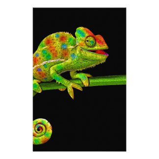 Chameleons Stationery