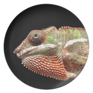 Chamelion Plate