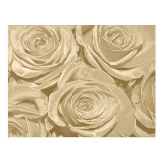 Champagne Roses Save the Date Wedding Postcard