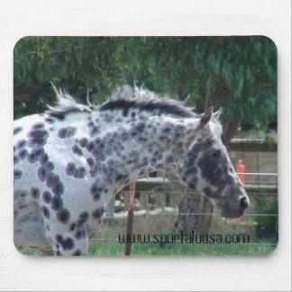 champion reining stallion mouse pad