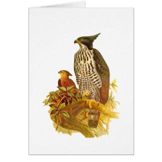 Changeable Hawk Eagle Card