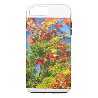 Changing Leaves Nature Ipod Case