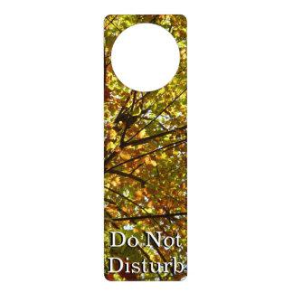 Changing Maple Tree Green and Gold Autumn Door Hanger