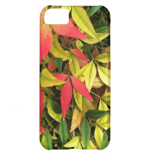 Changing Seasons iPhone 5C Case