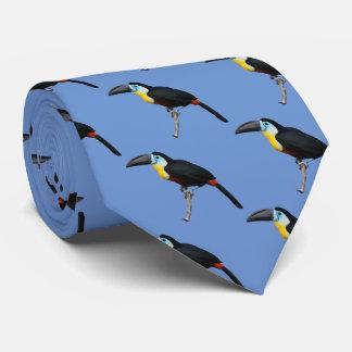 Channel-billed Toucan Tie