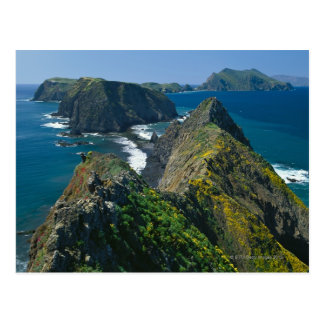 Channel Islands National Park, Southern Postcard