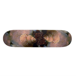 Channeled top shell Shell Skateboards