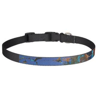 Chaos Collar Dog Collar