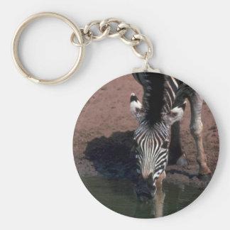 Chapman s Zebra - Eye Contact Key Chain
