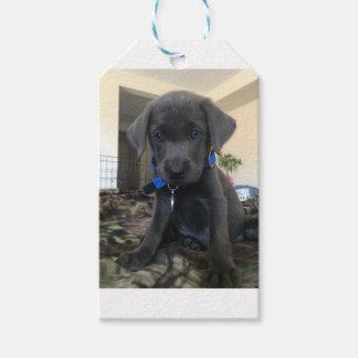 charcoal labrador, gift tags