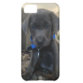 charcoal labrador iphone case, iPhone 5C case