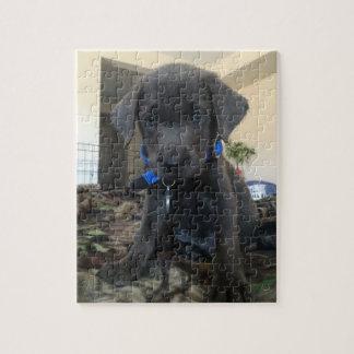 charcoal labrador puzzle