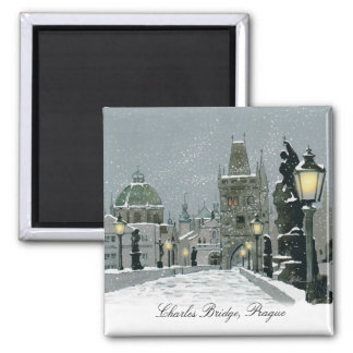 Charles Bridge magnet