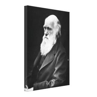 Charles Darwin Portrait Canvas Prints