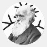 Charles Darwin Round Stickers