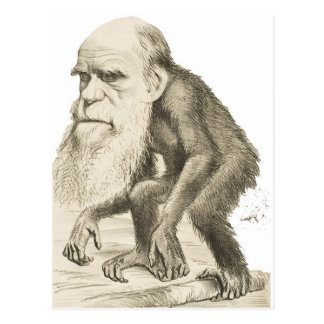 Charles Darwin the Monkey Man Postcard