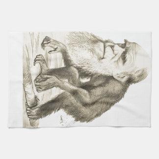 Charles Darwin the Monkey Man Tea Towel