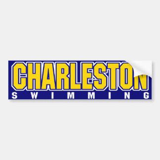 Charleston Bumper Sticker