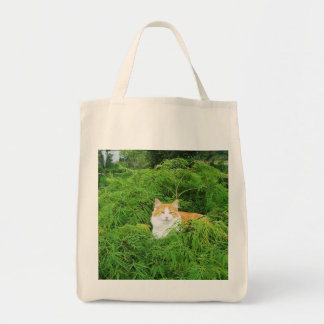 Charlie in the Maple Tote Bag