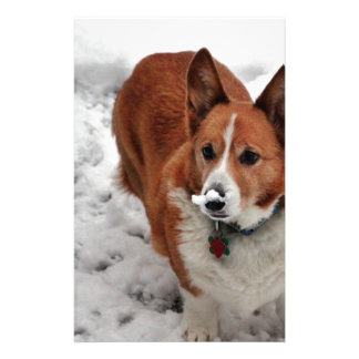 Charlie Snow Snout Personalized Stationery
