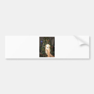 Charlie The GoldenDoodle Puppy on Christmas Bumper Sticker