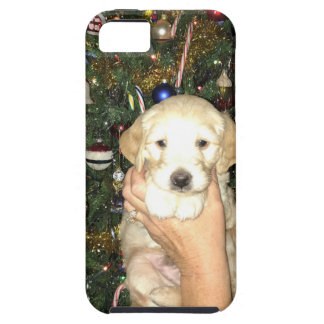 Charlie The GoldenDoodle Puppy on Christmas iPhone 5 Covers