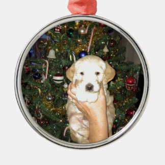 Charlie The GoldenDoodle Puppy on Christmas Metal Ornament