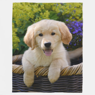 Charming Goldie Puppy Fleece Blanket